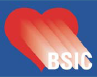 bsic.png